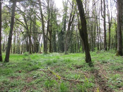Oregon City, Beavercreek, Molalla, Mulino Residential Lots & Land For Sale: 10545 S Phil Way