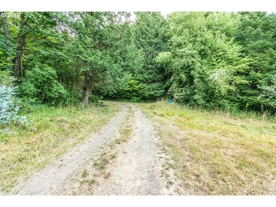 Sweet Home Farm & Ranch For Sale: 42259 Ames Creek Rd