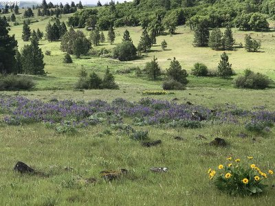 Goldendale, Lyle Residential Lots & Land For Sale: 240 Hartland Rd