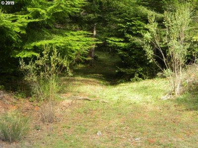 Gold Beach Residential Lots & Land For Sale: Skyview Ranch Rd