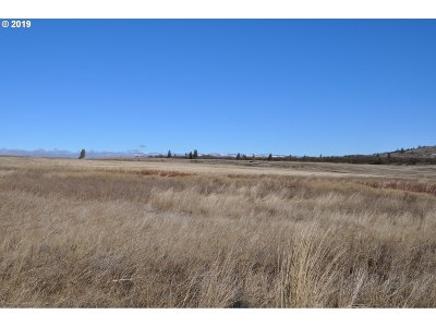 Goldendale, Lyle Residential Lots & Land For Sale: Jack Frost Way #49