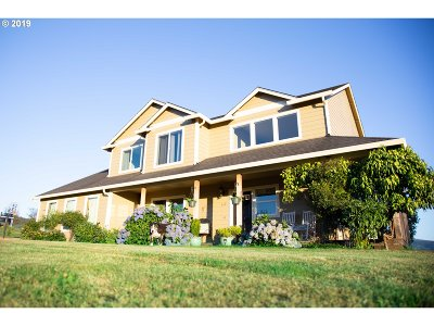 Washougal Single Family Home For Sale: 312 Sprinkle Rd