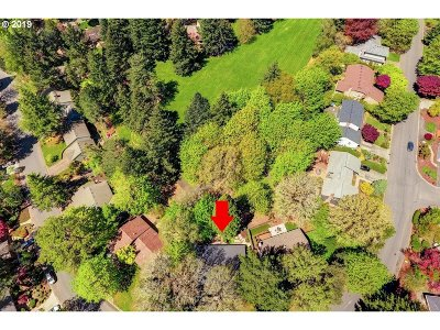 Lake Oswego Single Family Home For Sale: 63 Touchstone