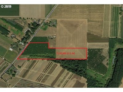 Woodburn Farm & Ranch For Sale: Boones Ferry Rd NE