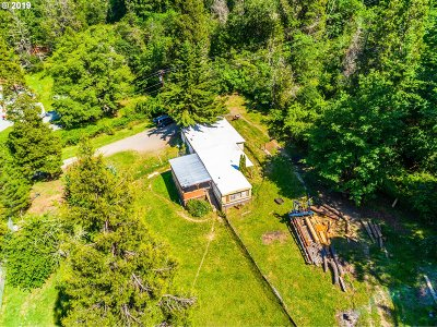 Riddle Single Family Home For Sale: 1328 Canyonville-Riddle Rd