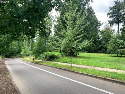 Sandy Residential Lots & Land For Sale: American St