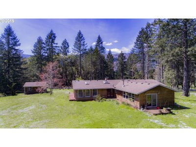 Roseburg Single Family Home For Sale: 650 Callahan Rd