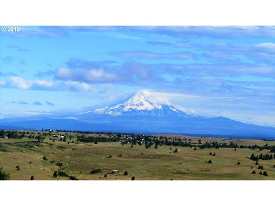 Goldendale, Lyle Residential Lots & Land For Sale: 1134 Centerville Hwy