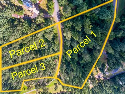 Cottage Grove, Creswell Residential Lots & Land For Sale: Bear Ridge Rd #1