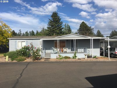 Newberg Single Family Home For Sale: 2901 E 2nd St