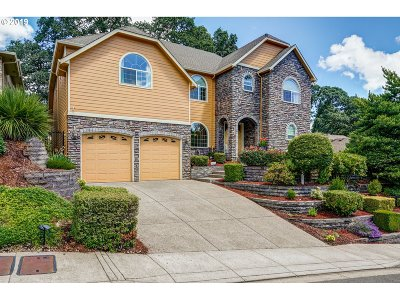 Salem Single Family Home For Sale: 285 Mirasol Ave SE