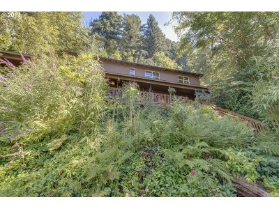 Troutdale Single Family Home For Sale: 1283 E Hist Columbia River Hwy