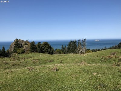 Port Orford Residential Lots & Land For Sale: 37861 Pacific Highlands Dr