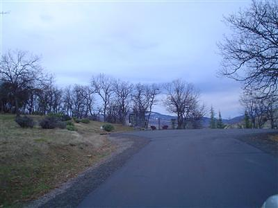 Rogue River Residential Lots & Land For Sale: 4697 E Evans Creek Road