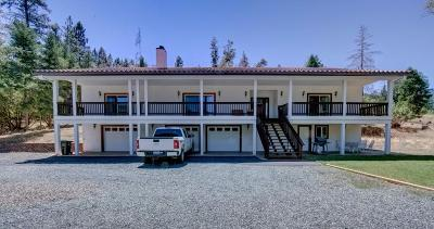 Rogue River Single Family Home For Sale: 2295 W Evans Creek Road