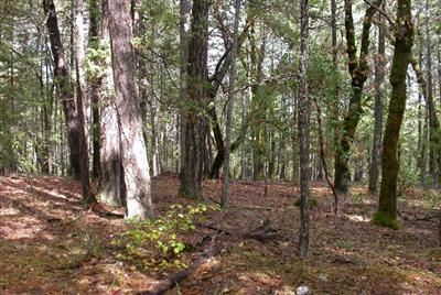 Josephine County Residential Lots & Land For Sale: Green Tree Loop
