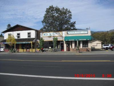 Cave Junction OR Commercial For Sale: $140,000