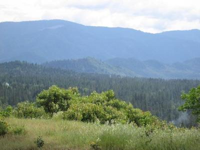 Josephine County Residential Lots & Land For Sale: 538 View Top Road