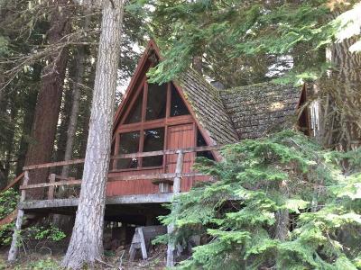 Ashland Single Family Home For Sale: 1166 Hyatt Prairie Road