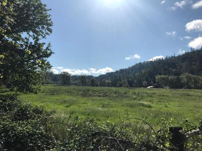Merlin, Sunny Valley, Wimer, Rogue River, Wilderville, Grants Pass Farm For Sale: 9820 E Evans Road