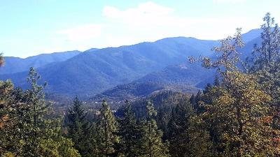 Merlin, Sunny Valley, Wimer, Rogue River, Wilderville, Grants Pass Residential Lots & Land For Sale: 2000 W Jones Creek Road