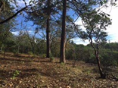Josephine County Residential Lots & Land For Sale: South Vannoy Creek Road