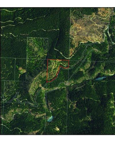 Josephine County Residential Lots & Land For Sale: Lower Grave Creek Road