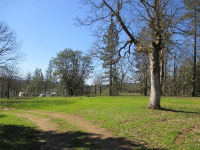 Josephine County Residential Lots & Land For Sale: 168 Gary Lane