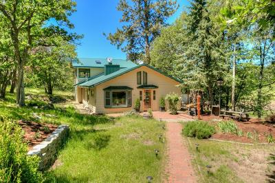 Ashland Single Family Home For Sale: 4412 Old Hwy 99