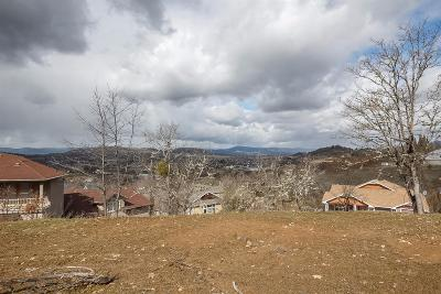 Jackson County, Josephine County Residential Lots & Land For Sale: 1312 Poppy Ridge Drive