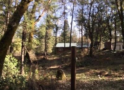 Jackson County, Josephine County Single Family Home For Sale: 14318 E Evans Creek Road