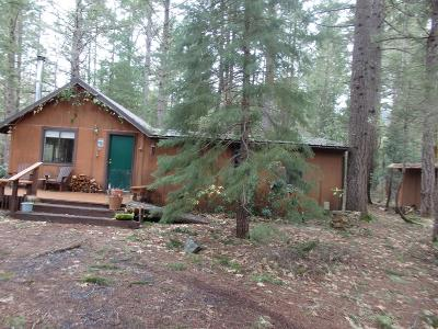 Josephine County Single Family Home For Sale: 6300 Deer Creek Road