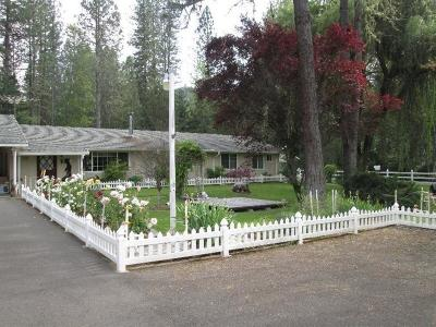 Rogue River Single Family Home For Sale: 4585 E Evans Creek Road