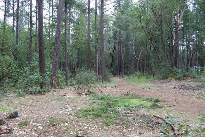 Josephine County Residential Lots & Land For Sale: Redwood Highway