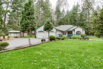 Merlin Single Family Home For Sale: 1090 Barker Drive