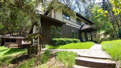 Jackson County, Josephine County Single Family Home For Sale: 7447 Rogue River Highway