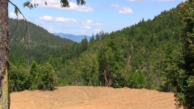 Grants Pass Residential Lots & Land For Sale: Cheney Creek TL 2100