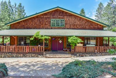 Merlin Single Family Home For Sale: 1160 Crow Road