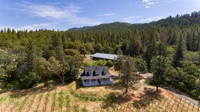 Jackson County, Josephine County Single Family Home For Sale: 4067 Little Applegate Road