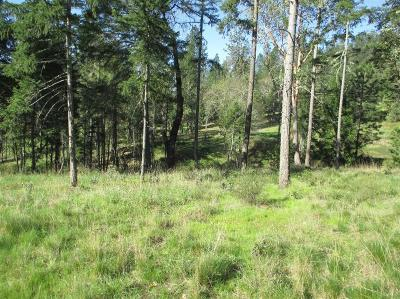 Josephine County Residential Lots & Land For Sale: 115 Finley Bend Drive