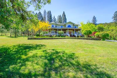 Josephine County Single Family Home For Sale: 792 Hyde Park Road