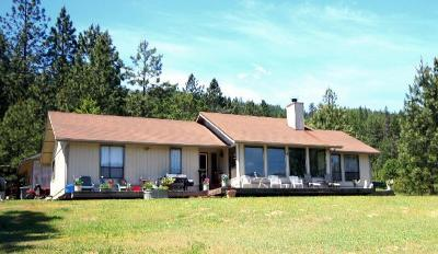 Jackson County, Josephine County Single Family Home For Sale: 7780 Upper Applegate Road