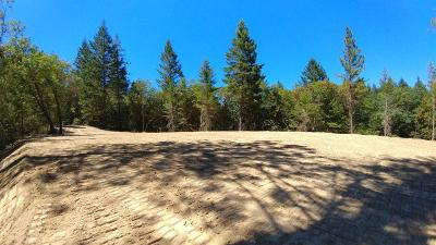 Merlin, Sunny Valley, Wimer, Rogue River, Wilderville, Grants Pass Single Family Home For Sale: 128 Cambridge Drive