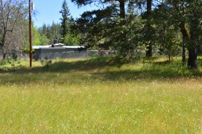 Applegate Residential Lots & Land For Sale: 14300 Upper Applegate Road