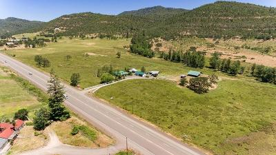 Eagle Point Single Family Home For Sale: 17210 Highway 62