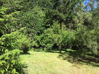 Josephine County Residential Lots & Land For Sale: 3040 Board Shanty Road