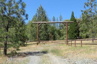 Josephine County Residential Lots & Land For Sale: 425 Shorthorn Gulch Road