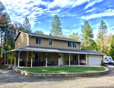 Jackson County, Josephine County Single Family Home For Sale: 9838 W Evans Creek Road