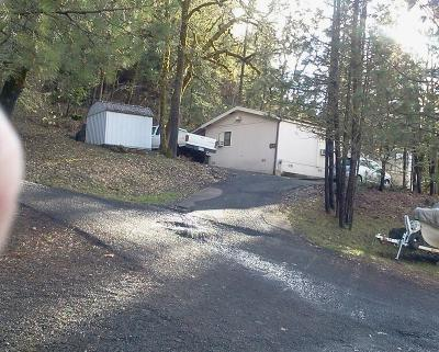 shady cove Single Family Home For Sale: 110 Firehouse Lane