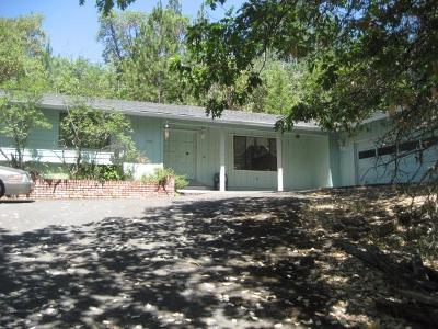 Single Family Home Sold: 498 Palomino Drive